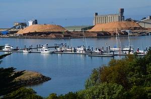 New Protland Marina